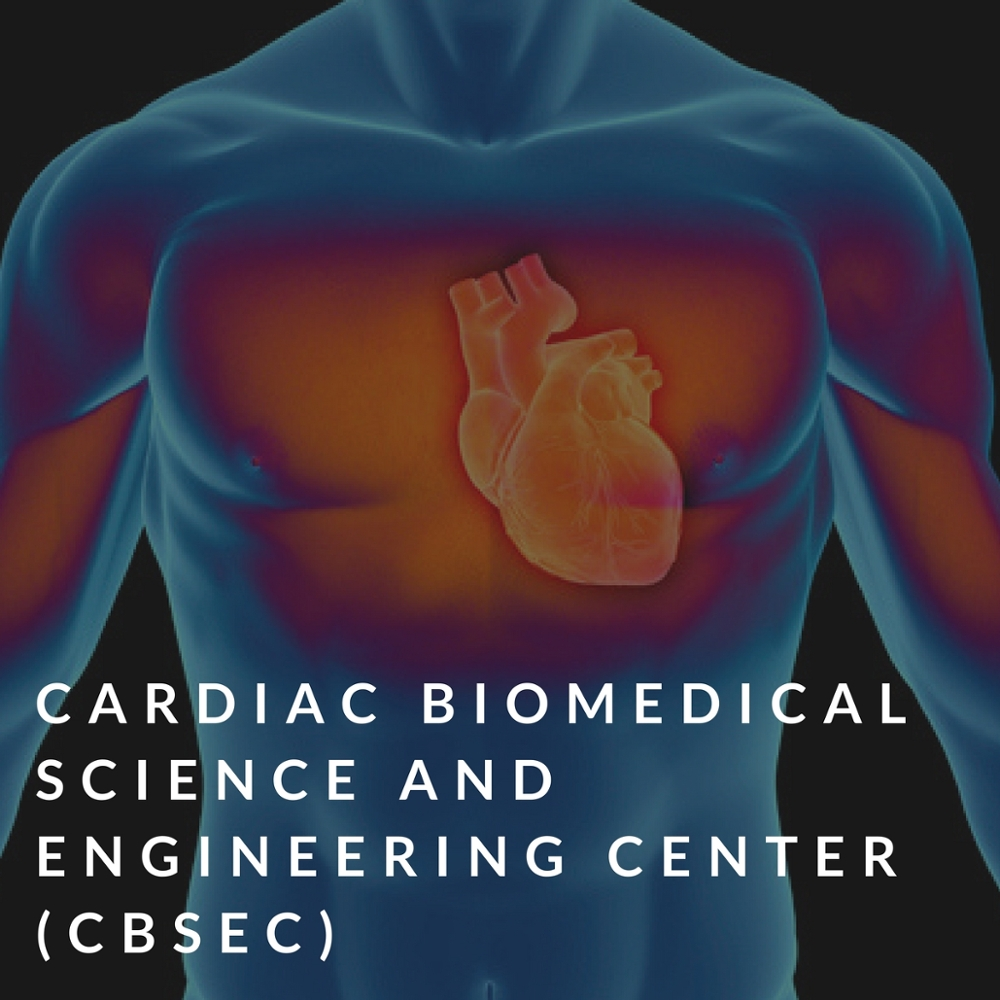 cardiac biomedical science and engineering center (cbsec)