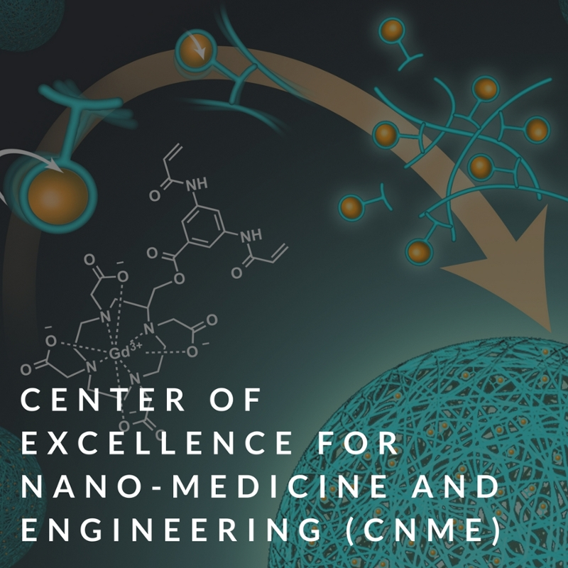 center of excellence for nano-medicine and engineering (CNME)