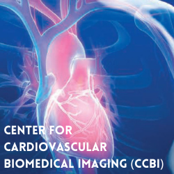 no-Center-for-Cardiovascular-Biomedical-Imaging-2.png