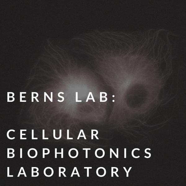 berns lab